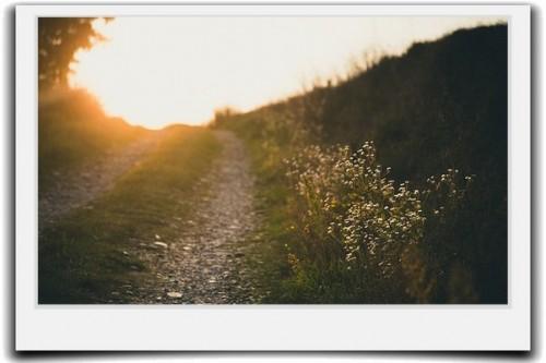 自分の天職を見つける方法とは?必ず訪れる運命の分かれ道