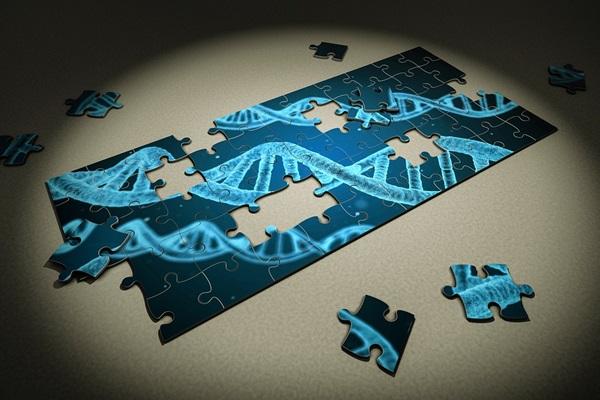 メンタルの弱さ 遺伝